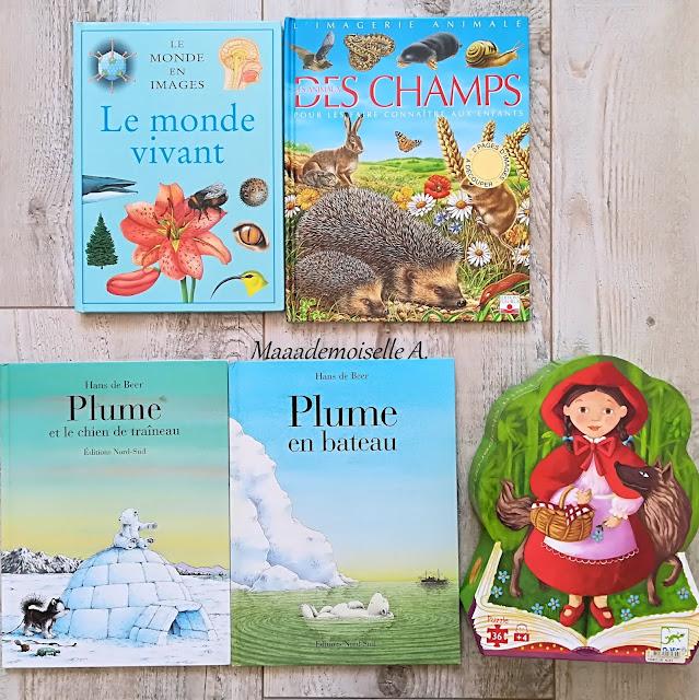 Les animaux des champs - Plume et le chien de traineau - Plume en bateau - Puzzle Djeco Petit Chaperon rouge