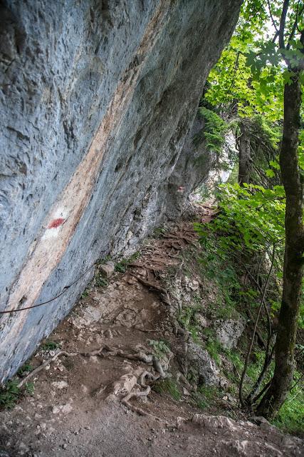 Silberkarklamm Rundweg Wilde Wasser und Klettersteige  Ramsau am Dachstein   Hias-Klettersteig  Siega-Klettersteig 17