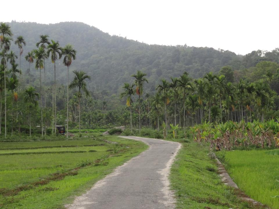 Road to heaven in Wayanad, Kerala