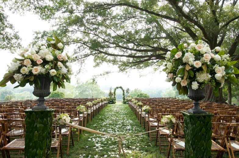 Bn Wedding Décor Outdoor Wedding Ceremonies: MAESTRA-OFICIANTE DE CEREMONIAS CIVILES