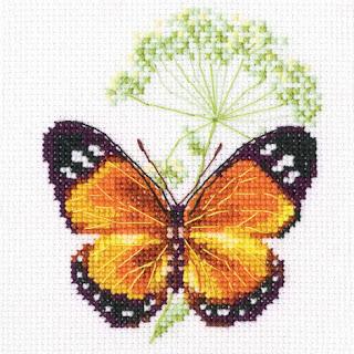 RTO, Цветок тмина и бабочка