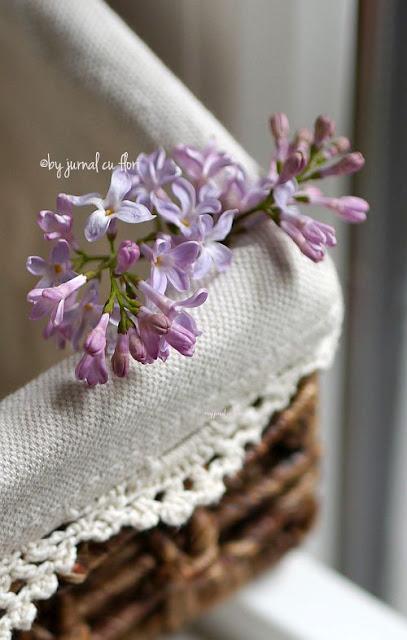 dantela si liliac #lilac #lace