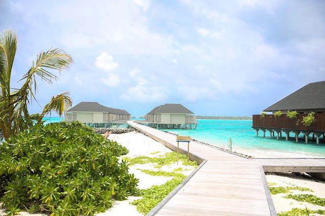 summer island maldives resort maldive water villas
