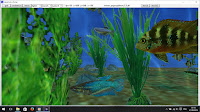 aquarium_chung4 dans freebasic