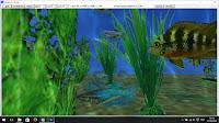 aquarium_chung4 dans freebasic
