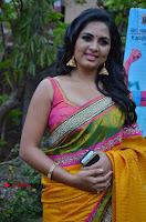 Actress Srushti Dange Latest Pos in Yellow Silk Saree at Saravanan Irukka Bayamaen Tamil Movie Press Meet  0006.jpg