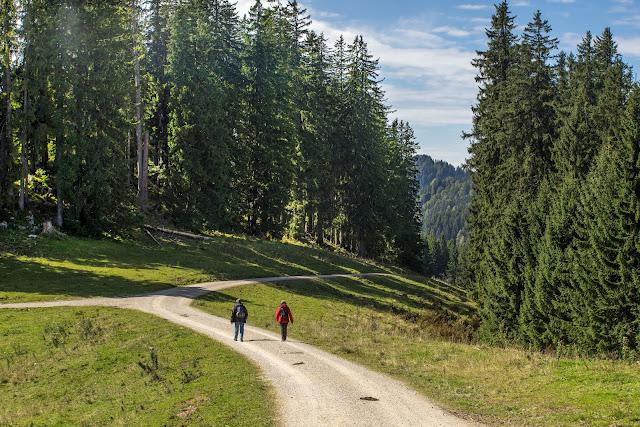 Unternberg Gipfeltour  Wandern Ruhpolding  Wanderung Chiemgau  Unternberg-Branderalm-Seehaus 02