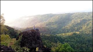Spot Watu Ngadeg hutan pinus pengger