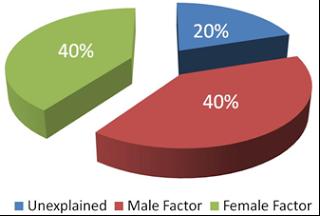 Dalam sebuah penelitian menghasilkan sebuah fakta bahwasanya 40% dari infertilitas atau ketidaksuburan yang terjadi pada suatu pasangan suami istri ternyadata terji pada pihak sang suami.