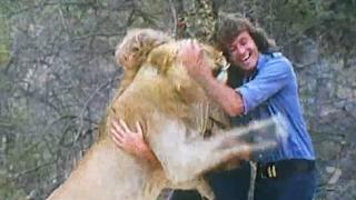 Ο Χριστιανός το λιοντάρι