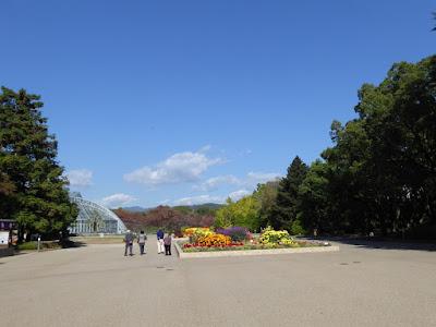 京都府立植物園の正門花壇