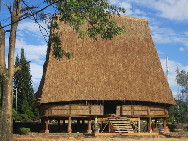 The featured extraordinary wooden houses in Central Vietnam