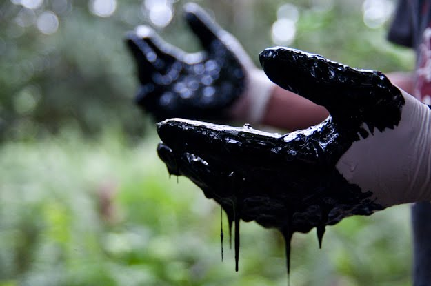 Crude oil left by Texaco (now Chevron) in the Amazon rainforest