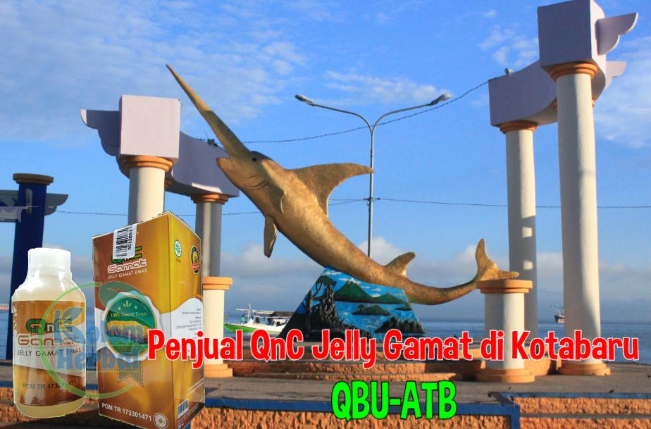 Penjual QnC Jelly Gamat di Kotabaru