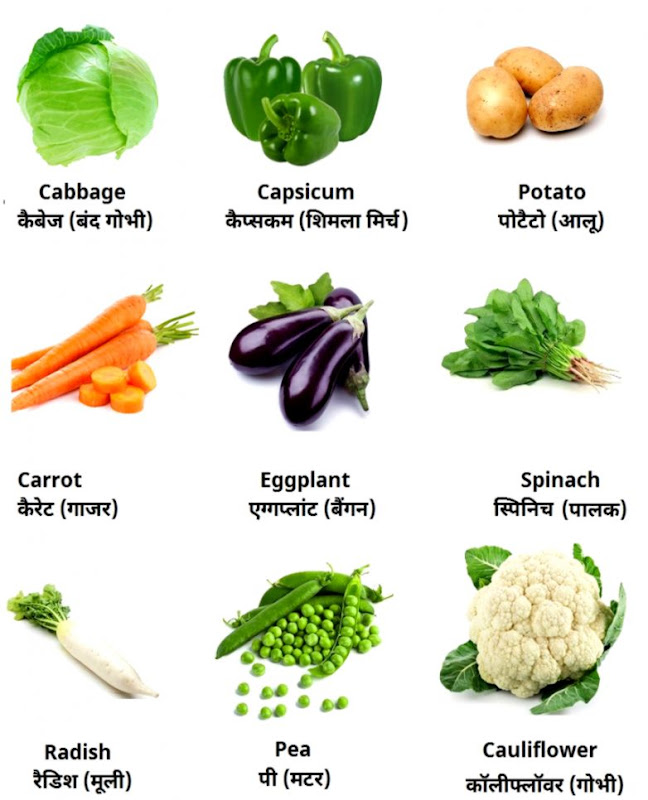 Vegetables Name In Hindi Chart Falo Lawscl Org
