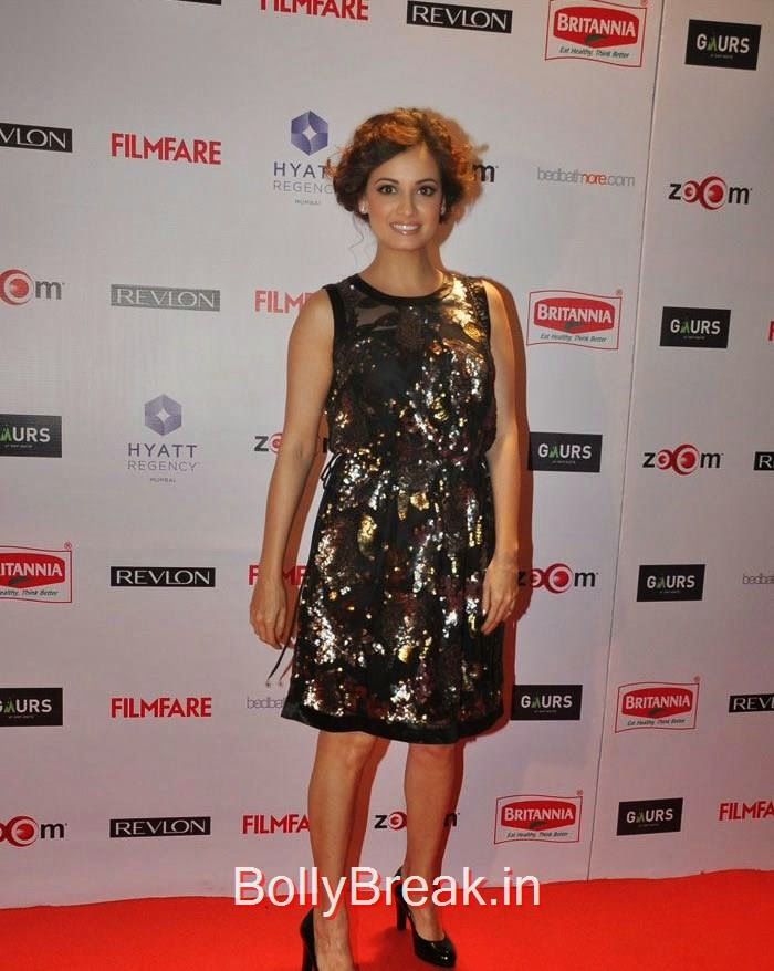 Dia Mirza, 60th Britannia Filmfare Awards pre-awards Party 2015 Red Carpet Pics