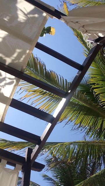 Akumal Bay Beach & Wellness Resort Riviera Maya Mexico