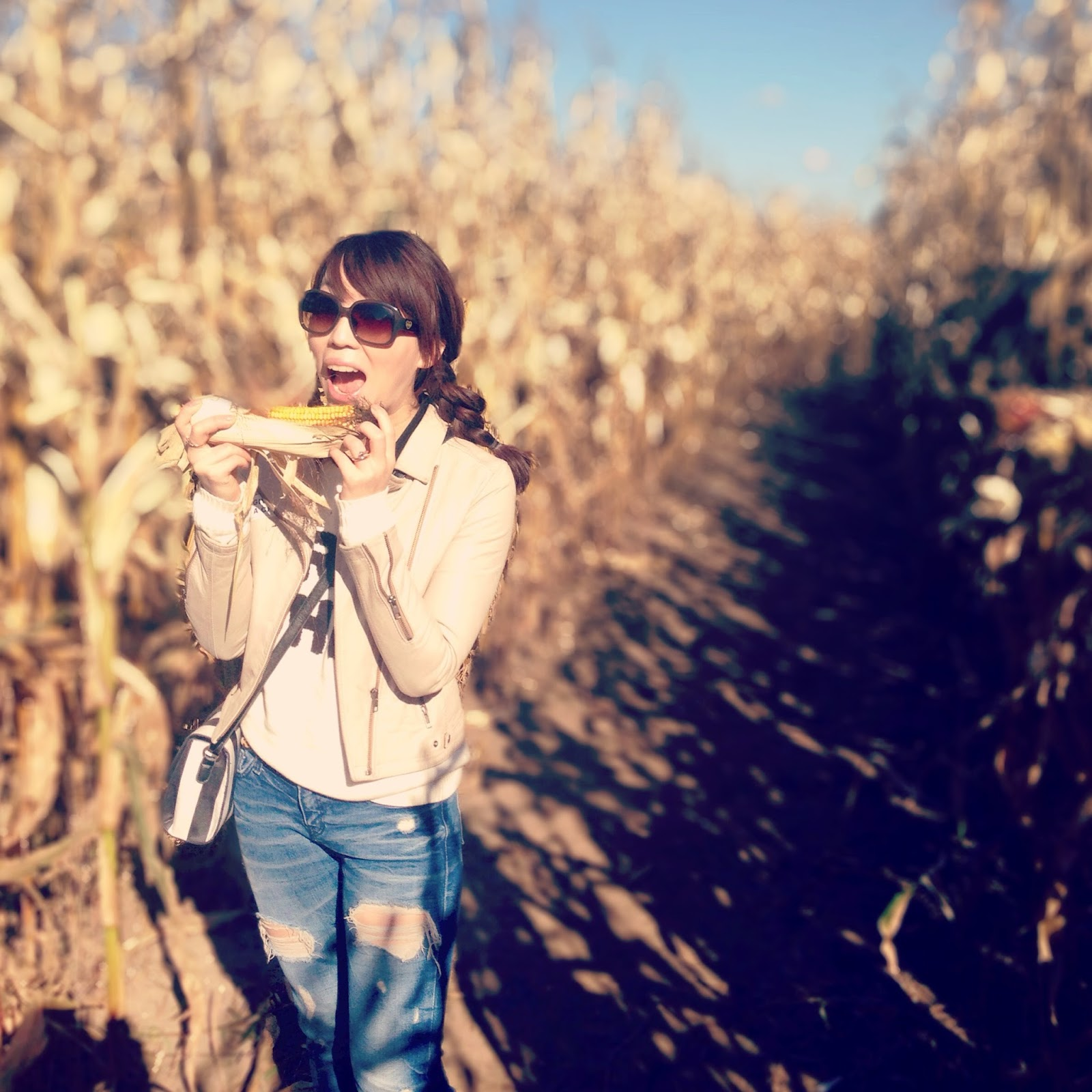 Lost in the Corn Maze {Cooper's Farm}