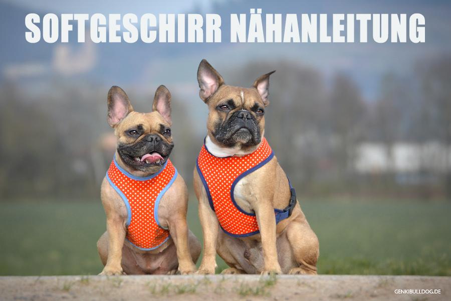 HUNDEBLOG GENKI BULLDOG : Anleitung: Softgeschirr für Hunde selbst ...