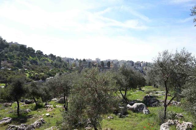 Vallée de la Croix - Jérusalem