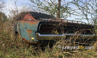 B5 Blue Charger with a luggage rack is complete but rusting among hundreds of cars in the backwoods of Mississippi.