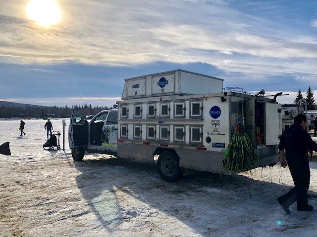 Dog carriers on trucks are common site in Fairbanks (Source: Palmia Observatory)