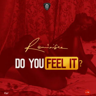 [AUDIO] Reminisce - Do you feel it