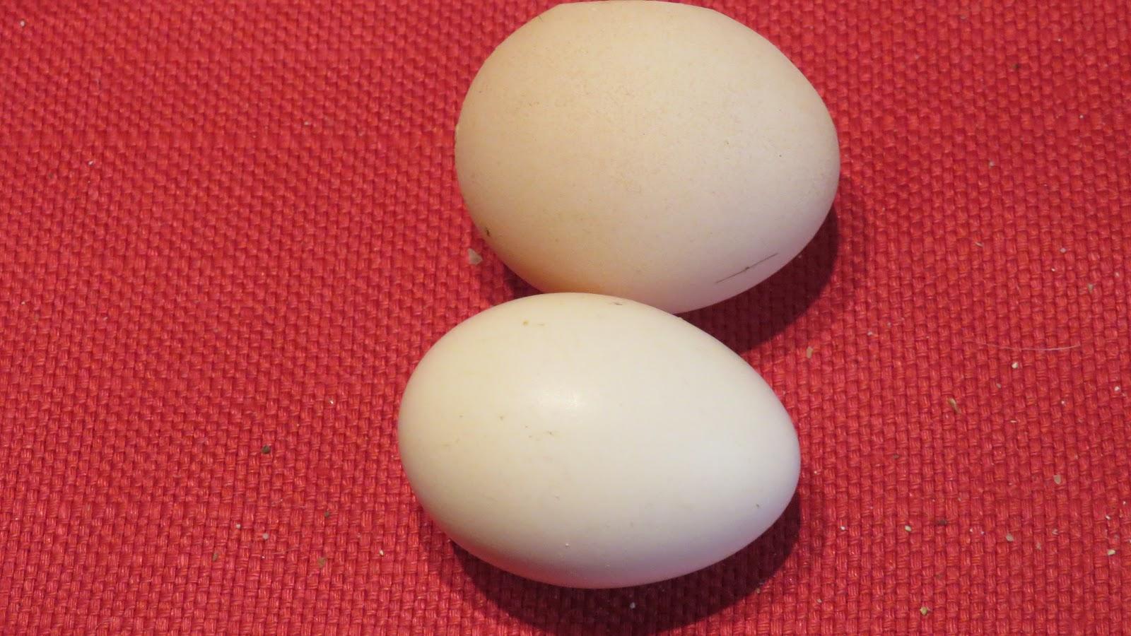 ett ägg väger