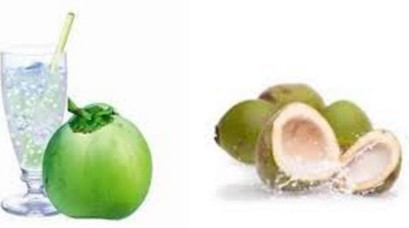 नारियल का पानी पीयें