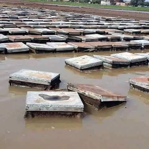 Συμβουλές για τις πλημμύρες: Τι κάνουμε για να προστατέψουμε τα μελίσσια μας και τι κάνουμε σε περίπτωση που πλημμυρίσουν!!!
