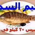 رجيم السمك لتخسيس 20 كيلو فى الشهر