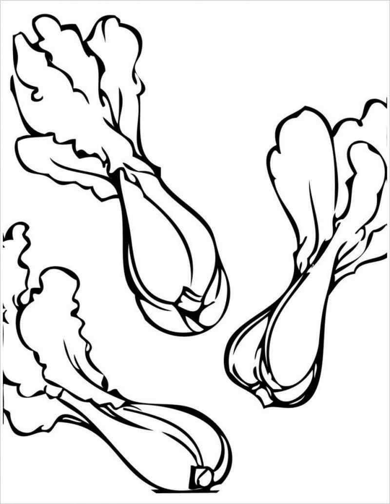 Tranh tô màu rau cải chíp
