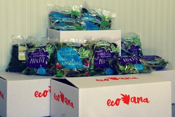 cajas para verduras ecologicas