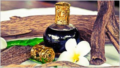 4 loại tinh dầu chữa mất ngủ thường dùng cho hiệu quả nhanh chóng