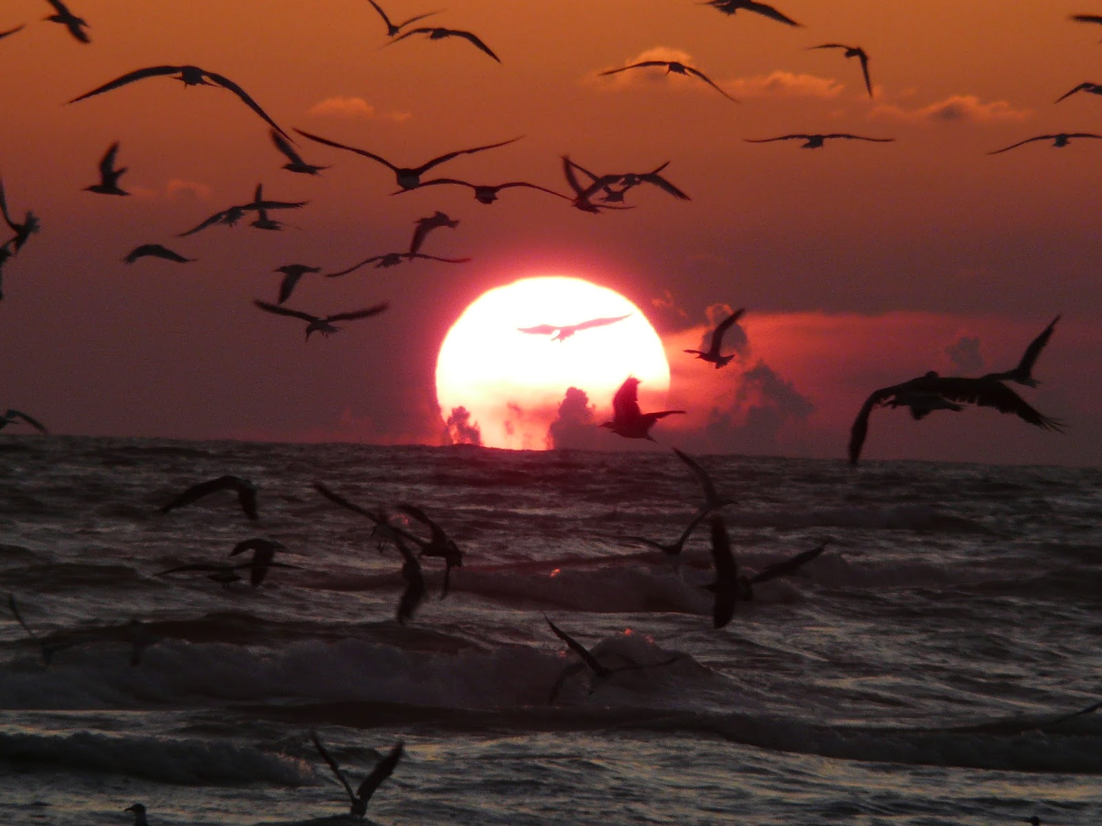 Amazing Sunsets | Most Beautiful