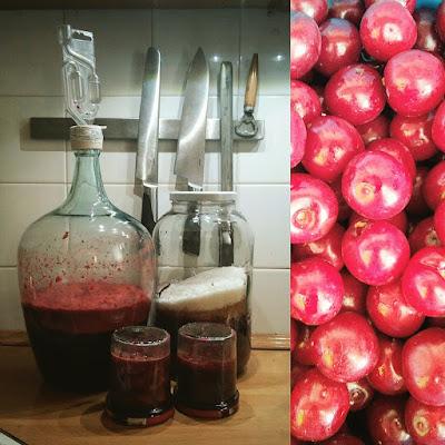 wino z wiśni, wiśniówka domowa
