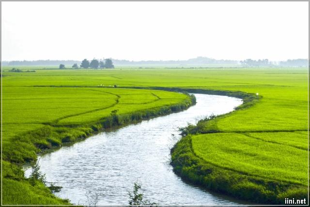 dòng sông nhỏ uốn lượn