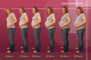 Ilmu Kebidanan Perubahan Tubuh Ibu Hamil Pada Trimester Ke 2 13 28 Minggu