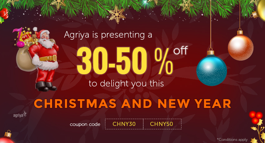 Agriya Has Arrived With Attractive Christmas & New Year Website and App Development Discount