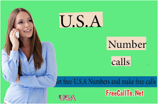 How to get free Usa virtual phone number