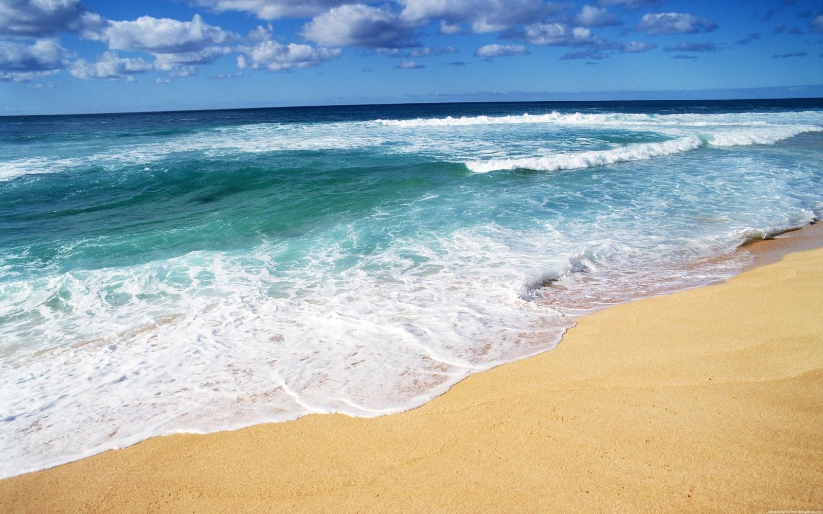 Online Wallpapers Shop: Beach Wallpaper   Beach Pictures Backgrounds   Free Beach Desktop Images
