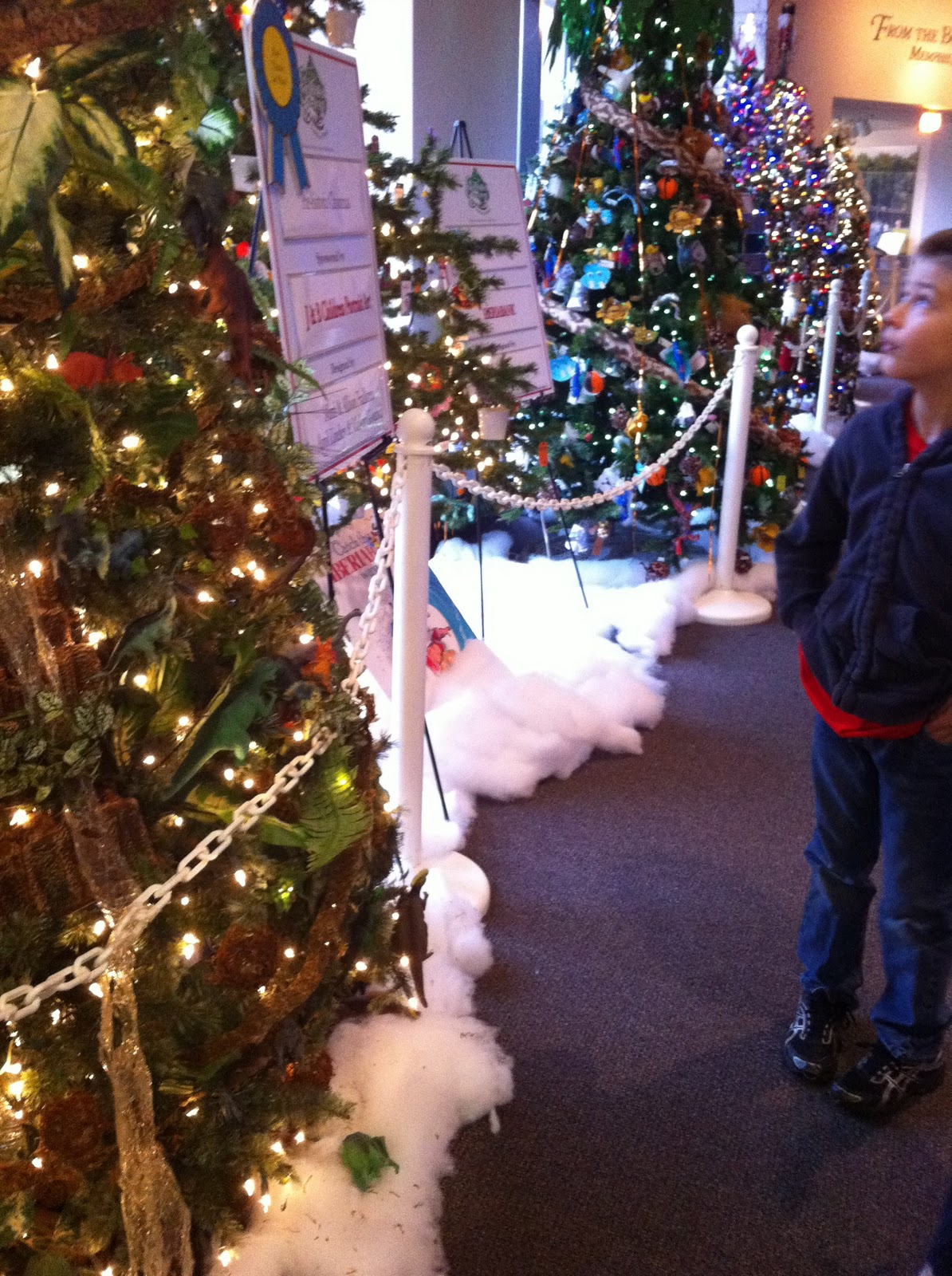 The Enchanted Forest at The Pink Palace - East Memphis Moms