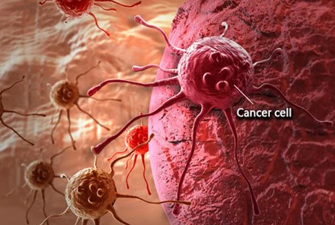 What is cancer? What causes cancer?| Some Facts About Cancer | Treatments Of Cancer| What Causes Cancer Cells |