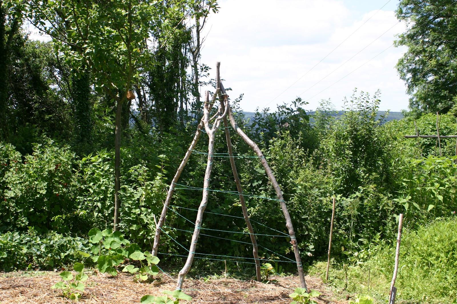 Permacultuur avontuur 19 verticaal tuinieren - Te nemen afscheiding ...