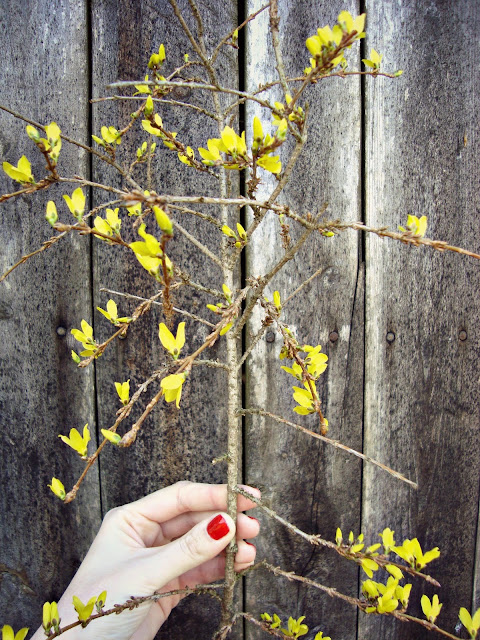 Slow life - alergik wiosną. Czym pachnie wiosna. Sposoby na alergię. Alergie skórne.