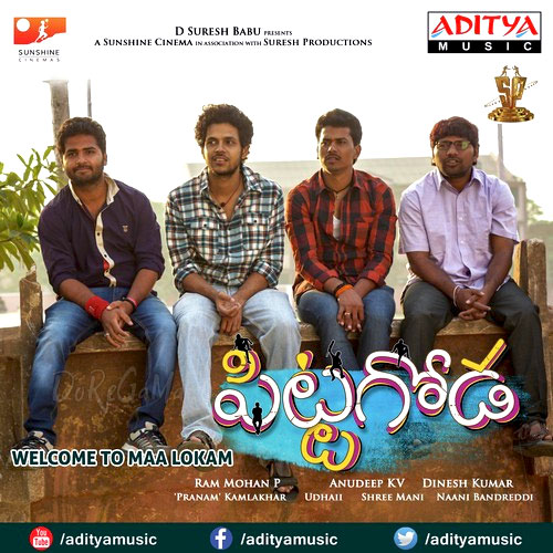 Pitta-Goda-Telugu-2016-Original-CD-Front-Cover-Poster-wallpaper