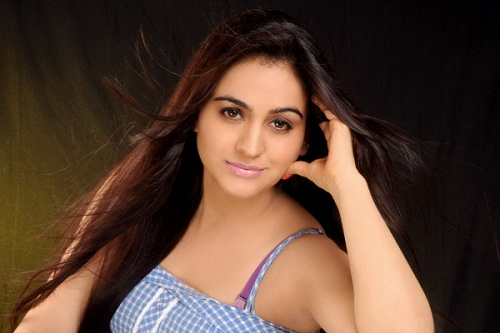 Aksha Pardasany Photoshoot Pictures