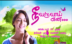 Nee Varuvai Ena,03rd November 2016, Watch Online Nee Varuvai Ena Serial, Polimer TV Serial, 03.11.2016 , Episode 14