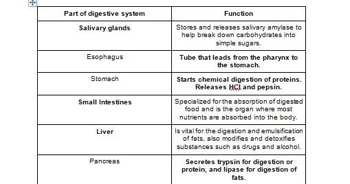 Homework help ilc science