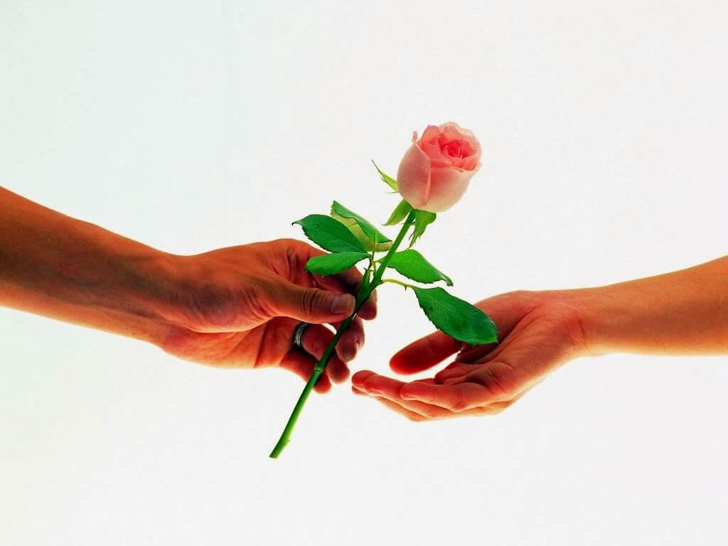 Happy Rose Day Messages HD Wallpapers
